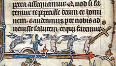 Rabbits on parade. Hours of Saint-Omer, France ca. 1320 (BL, Add 36684, fol. 24v)