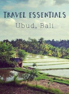 Travel guide to Ubud, Bali