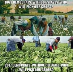 Nothing has changed with the Dems.