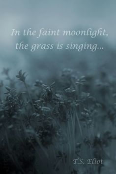 T.S Eliot~'In the faint moonlight, the grass is singing'...