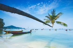Looking for things to do in Koh Samui? Check out our complete list including the things we recommend you avoid doing. Koh Samui is a stunning...