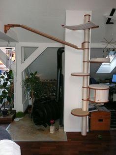 kratzbaum_catwalking! wonderful designs for climbing!