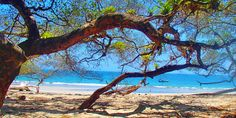 ilha viagem, golfo de Chiriquí Marine Park, Boquete, Panamá, Boca Chica, brava…