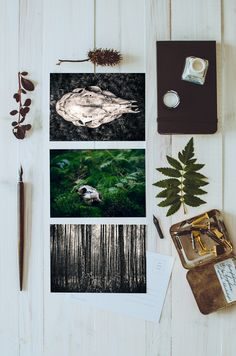 Custom curated postcards and greetingcards for your mailing pleasure.  http://www.kmgfoto.at/shop