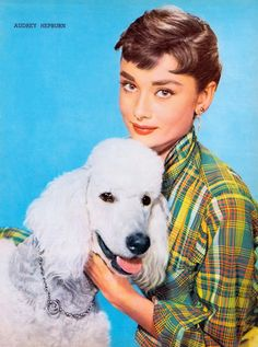 AUDREY HEPBURN & French poodle. A gorgeous pin-up page for SABRINA. Picturegoer Annual (U.K) (1954) (please follow minkshmink on pinterest) #audreyhepburn #sabrina #poodle