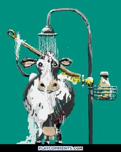 humor foto: GIF A 'cow'd shower. Gif Pictures, Moving Pictures, Animated Cartoons, Animated Gif, Animals Images, Cute Animals, Animation, Tierischer Humor, Morning Greeting
