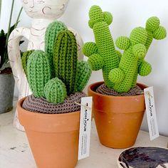 Cactus fait main au crochet, planté dans des pots en terre… Chaque Cactus est unique. Prix selon le diamètre du pot en terre: S = 7 cm ø =18 € M = 8 cm ø = 24 € M+ = 9 cm ø = 28 € L =11 cm ø = 32 € XL =13,5 cm ø = 38 € XXL =15 cm ø = 45 €  Contactez moi pour commander votre cactus,