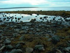 Belfast, Maine I love walking on these rocks! carefully though