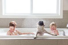 friends. bath. together.   Jennifer Kapala, Canada