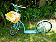 Too Stinkin' Cute hope to get this amish bike gotta have it and this adorable little basket liner!