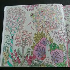 JohannaBasford EnchantedForest ColoringBooks Left Side Of 2pg