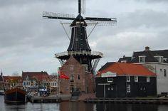 Haarlem,capital of North-hooland