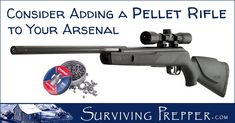 Surviving Prepper covers the four types of pellet rifles, and which type is best suited to the lifestyle and needs of preppers. Ruger 10/22, Survival Items, Air Rifle, Survival Shelter, Military Gear, Black Ops, Rifles, Arsenal, Hunting