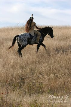 A Native American man riding horseback scouting for enemies or hunting for food in the prairie of South Dakota. Nancy Greifenhagen Photography