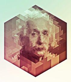 Einstein. Albert Einstein.