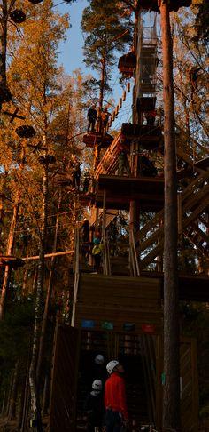 Seikkailujoita riitti jonoksi asti. Aurinko kultasi latvukset. #seikkailupuisto #treetopadventure #finland