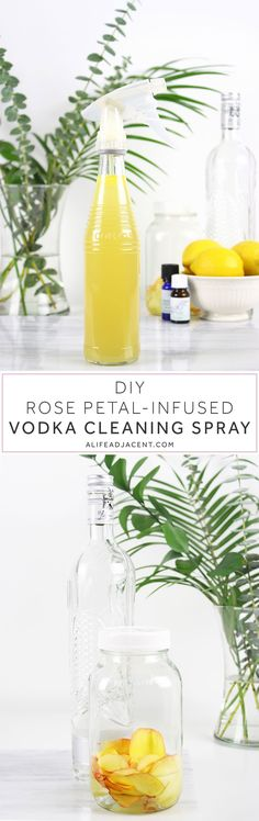 Learn how to make your own natural DIY cleaning spray with vodka and antibacterial essential oils. Naturally disinfect your home with no chemicals. Essential Oil Cleaner, Essential Oils Cleaning, Cleaning Spray, Green Cleaning, Cleaning Recipes, Cleaning Hacks, Diy Rose, Glass Bottle, Spray Bottle