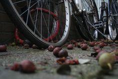 Fiets in Den Haag Door Arjan Sikkema