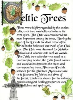 """""""Trees were highly regarded by the ancient Celts. Each tree was believed to have its own spirit."""" Little side note. JK Rowling made the main Harry Potter characters' wands out of the Celtic trees for their birth months. Celtic Tree, Irish Celtic, Celtic Dragon, Celtic Heart, Josephine Wall, Celtic Culture, Irish Culture, Irish Quotes, Irish Sayings"""