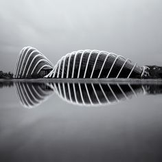 Marina Bay, Singapore by Nathan Hayag ~A beautiful place that I was lucky enough to live in for two years! Singapore Architecture, Minimalist Architecture, Organic Architecture, Futuristic Architecture, Amazing Architecture, Contemporary Architecture, Art And Architecture, Unique Buildings, Organic Shapes