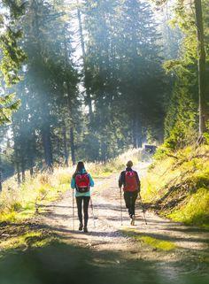 Zeit mit der besten Freundin ist unbezahlbar. Wie wäre es mit einer Wanderung auf der Teichalm? #hotelteichwirt #almgasthof #wandern #wanderurlaub #naturparkalmenland #almenland Hotels, Mountains, Nature, Travel, Beautiful, Bike Trails, Hiking Trails, Water Pond, Bicycling