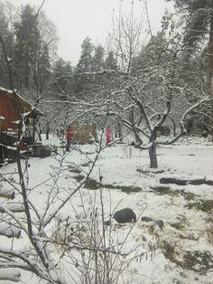 Vorort, Sankt Petersburg, Winter, wie Leute leben