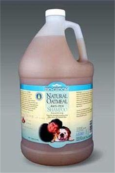 Bio-Groom Natural Oatmeal Anti-Itch Dog and Cat Shampoo, 1-Gallon - http://www.thepuppy.org/bio-groom-natural-oatmeal-anti-itch-dog-and-cat-shampoo-1-gallon/