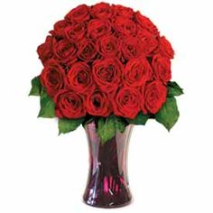 These striking 24 Red Roses will take their breath away. Our Summer Rose Special consists of 24 Premium Long Stem Red Roses (approximately 22 - 24 inches long) accented with greenery and Baby's Breath! Also included are a quality message card floral preservative and flower care information. Your flowers come elegantly wrapped in a decorative sleeve and are hand packed in an attractive gift box.