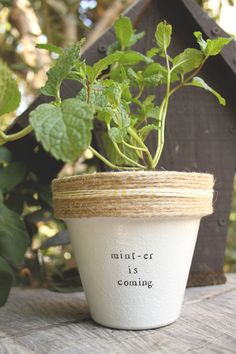 """GOT """"Mint-er is Coming."""" by PlantPuns on Etsy"""