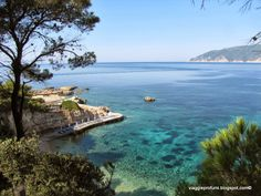 Skiathos, Holiday Mood, Greece Wedding, Greek Islands, Beautiful Islands, Travel Guide, Travel Inspiration, Notes, Sea