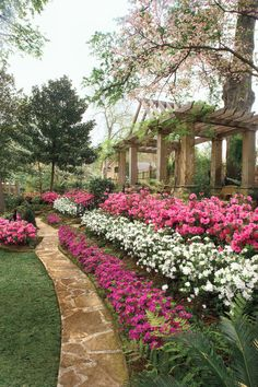 Easy landscaping azaleas Ideas for Summer Most Amazing Landscaping Azaleas - Home landscaping can be simple and fun for everyone in the family. Azaleas Landscaping, Home Landscaping, Front Yard Landscaping, Landscaping Images, Landscape Plans, Landscape Design, Garden Design, Landscape Architecture, Pink Garden