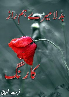 Badla mere hamraz ka rang novel by Farhat Ishtiaq Novels To Read Online, Knowledge Quiz, Urdu Novels, Diy Hairstyles, Reading Online, Good Books, Funny Jokes, Neon Signs, Romantic