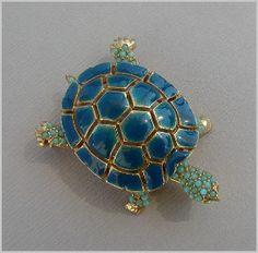 ciner turtle