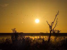 Morning by ingrit raven - Photo 174920569 / 500px