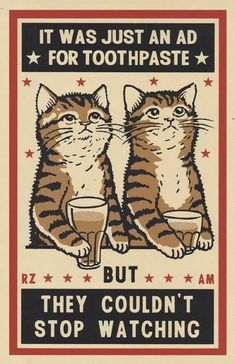 Three color screen print by Arna Miller & Ravi Zupa, featuring fun and whimsical images of cats drinking at bars. Available for purchase online through Spoke Art Gallery. Drunk Cat, Image Chat, Drawn Art, Matchbox Art, Collage, Cat Drinking, Cat Posters, Crazy Cats, Cat Art
