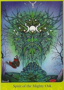Spirit of the Mighty Oak from the Woodland Wisdom Oracle Deck