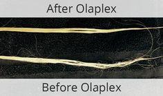 "Olaplex: The Hair ""Reset"" Treatment — Riccardo Maggiore"
