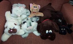 Pound puppies and kittens