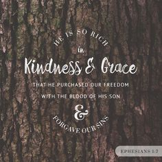 """""""In whom we have redemption through his blood, the forgiveness of sins, according to the riches of his grace;"""" Ephesians 1:7 KJV http://bible.com/1/eph.1.7.kjv"""
