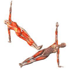 Half side plank pose on right hand - Vasisthasana half right ...