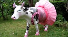 Ballerina Cow Chicken And Cow, Cow Parade, Cow Art, Cute Cows, Animal Statues, Toulouse, Public Art, Pony, Street Art