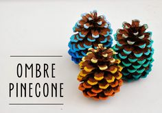 Grab some acrylic paint in three or four shades of similar hues, and carefully paint the tips of each pinecone from light to dark.