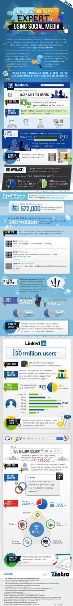 Leveraging Yourself as an Expert By Using Social Media infographic