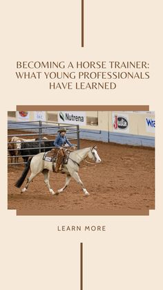 Ever wanted to become a horse trainer? Learn how. Hunter Under Saddle, Ranch Riding, Hunt Seat, Western Riding, American Quarter Horse, Riding Lessons, Western Pleasure, Young Professional, Horse Training