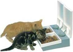 Dishes, Feeders & Fountains Used But Working Well Sunny Cat Mate C20 Automatic Cat Feeder Pet Supplies