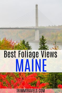Maine | Maine in the Fall | Fall in Maine | Autumn in Maine | Maine in Autumn | Fall Foliage | Best Fall Foliage Views in Maine | Autumn | Outdoors | Outdoor Travel | Hiking | Acadia National Park | Bar Harbor | Bangor | What to Do in Maine | What to See in Maine | Bangor Maine | Bar Harbor Maine | Fall Colors | New England | New England in Fall | Fall in New England | Trimm Travels | Fall Foliage in New England | #maine #fall #autumn #foliage