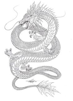 Outline sketch of the Chinese Water dragon…. Gonna Color it later. hmmnnn wat… Outline sketch of the Chinese Water dragon…. Gonna Color it later. hmmnnn watercolor or color pencil Feel free to Color it -this is open for collaboration Oriental Dragon Tattoo, Japanese Dragon Tattoos, Chinese Dragon Drawing, Chinese Tattoos, Asian Tattoos, Chinese Art, Chinese Kites, Tatuajes Irezumi, Irezumi Tattoos