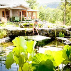 http://www.waterhousepools.com/ Natural Swimming Pool