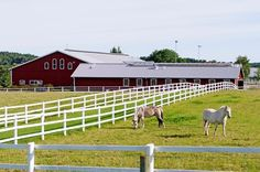 10 Resources on Creating a Horse Facility from TheHorse.com #horses #horsefarms #thehorse