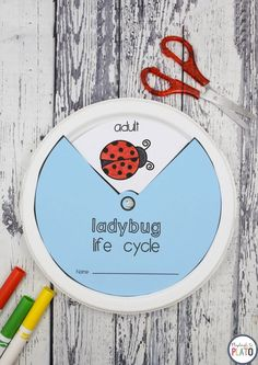 I love this life cycle craft! Learn about the ladybug life cycle with a paper plate wheel. Awesome science activity for a bug unit! Science Crafts, Science For Kids, Science Ideas, Preschool Ideas, Preschool Lessons, Teaching Ideas, Lady Bug, Bug Activities, Sequencing Activities